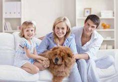 http://lglive.ru/zavodim-druga-semi-sobaku/ ...У каждой собаки свой характер, как у людей, одни бывают очень капризные, другие трусливые, хотя в принципе они все милые и задористые. И их просто нельзя не любить.... http://lglive.ru/zavodim-druga-semi-sobaku/