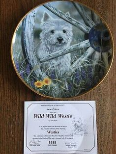 P late title:- Wild Wild Westie. P re owned in perfect condition with no original box but it has the certificate of authenticity. West Highland White, White Terrier, Westies, Terriers, The Collector, Plates, Gold, Animals, Ebay