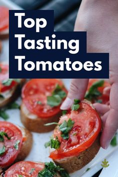 Here are the best-tasting types of tomatoes to grow in your garden. Add these to your garden planner! Types Of Tomatoes, Growing Tomatoes, Growing Vegetables, Green Zebra Tomato, Red Tomato, Backyard Vegetable Gardens, Tomato Garden, Gourmet