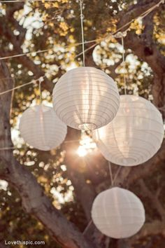 40 Trendy Wedding Decorations Pink And White Paper Lanterns - DIY Wedding Ideas - Wedding Lanterns, Lanterns Decor, Wedding Decorations, Ideas Lanterns, Hanging Lanterns Wedding, Tree Lanterns, Hanging Paper Lanterns, Chinese Lanterns, Garden Wedding