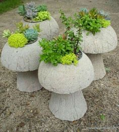 Make Lightweight Garden Art Projects That Last With Hypertufa – Container Water Gardens Make Lightweight Garden Art Projects That Last With Hypertufa – Container Water Gardens,Zement Cement mushroom planters Cement Art, Cement Crafts, Concrete Art, Concrete Garden, Concrete Planters, Gravel Garden, Wall Planters, Concrete Projects, Succulent Planters
