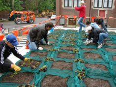 Parents at New City School installing plants on the green roof. — at New City School.