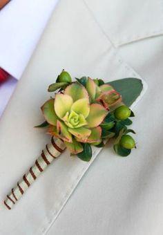 Succulent boutonniere by Vibrant Flowers.