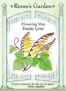 Exotic Love Flowering Vine Seeds 35 Seeds by Renee's Garden. $2.79. It is easy to add vertical interest to your garden by using vines. And this flower will add so much tropical interest,