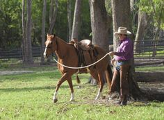 Horse Training Tips – How to Ride Like a Leader :: Parelli Natural Horse Training