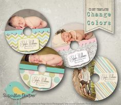 CdDvd Label Photoshop Template Es Instant Download