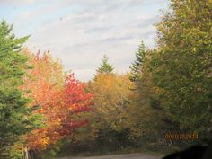 Autumn in New England!