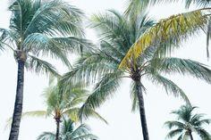 bahamas vacation summer trip aspyn ovard outfit ideas dresses lulus maxi dress printed_-2