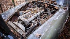 V lese našli vzácný Aston za miliony - Obrázek 4