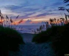 N.C. Beach: I think North Carolina Beaches are some of the best beaches based upon how even during the winter when its freezing you still want to walk on the beach and step into the water. Also if you take a look at books from known authors (ie. Sarah Dessen & Nicolas Sparks) all there books take place in NC. Its a place to get lost and to find yourself, to start fresh or to settle in. NC beaches are not like any other beach.