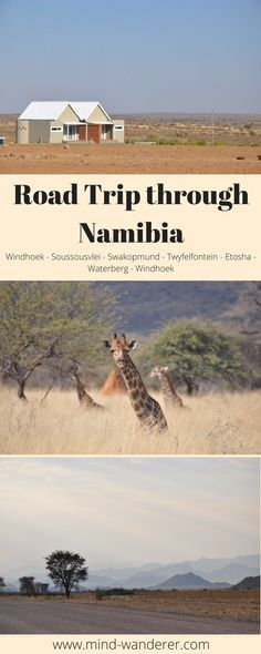 travel travelling reisen adventures adventure abenteuer afrika africa namibia namib reise desert wüste travelguide reisebericht tips tipps erfahrungen recommendations fotografie fotoshoot photography photoshoot blog blogging blogger german germany deutsch deutschland mind wanderer mind-wanderer