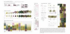 Go nuts! Plan voor de aanleg van een gemengd eikenwoud bestaande uit allerlei soorten bomen en struiken met vruchten voor de varkens.