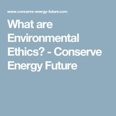 What are Environmental Ethics? Environmental Ethics, Conservation, Future, Future Tense, Canning
