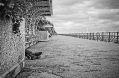 Brighton Folk