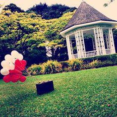 Park. Ballons. Peace.