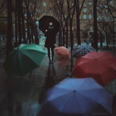 umbrellas in Zaragoza - null