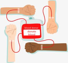 Blood donation to save people PNG and Vector Blood Donation Posters, Blood Donation Day, First Aid Classes, Holiday Homework, People Png, Blood Drive, Advocare, Medical Care, Red Cross