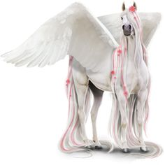 Winter, Pegasus Akhal-Teke Light Gray #3643633 - Howrse US
