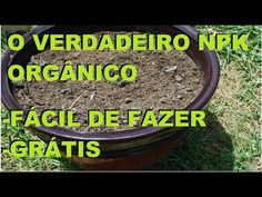 O verdadeiro adubo NPK orgânico grátis e fácil apenas 3 ingredientes! - YouTube Growing Vegetables, Home And Garden, Youtube, Plants, Instagram, 233, Greenhouse Gardening, Homemade Hydroponics, Patio Plants