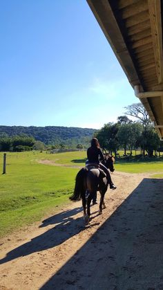 Perspective Photography, Horse Photography, Most Beautiful Animals, Beautiful Horses, Foto Cowgirl, Applis Photo, Snapchat Picture, Rio Grande Do Sul, Sky Art