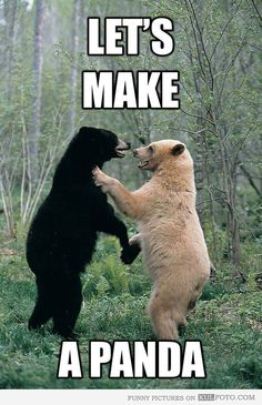 Let's make a panda.