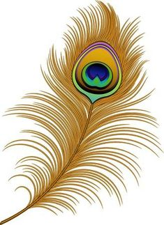 Peacock Feather vector image on VectorStock Feather Clip Art, Peacock Feather Tattoo, Feather Drawing, Feather Vector, Feather Tattoos, Peacock Feathers Drawing, Peacock Vector, Bird Tattoos, Peacock Wall Art