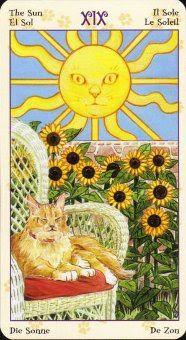 Tarot - Carta do Sol