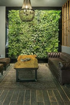 Indoor vertical gardens Earth Friendly:No harmful chemicals or toxins.