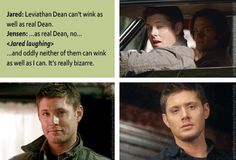 "[gifset] Ep 7.06 ""Slash Fiction"" DVD commentary, Leviathan!Dean, Dean, and Jensen. LOL!!!!"