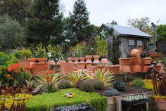 Cottage Garden ☆ Petaluma Ca