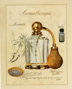 Aromatherapie, Lavande Print by Laurence David at Art.com