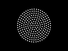 Phyllotaxis Spiral