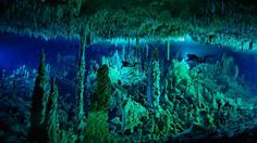 """Cathedrals of calcite  Called """"blue holes"""" for their deep navy hue, these flooded caves are spectacular calcite cathedrals of stalactites, stalagmites, draperies and fine, cylindrical deposits called straws. There is estimated to be more than 1,000 such caves in the Bahamas, only 20% of which have been explored. Cascade Room, a passageway 24m underground that leads into Dan's Cave, a blue hole on Abaco Island in the northern Bahamas. (Wes C Skiles/National Geographic Stock)"""