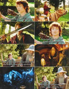 """""""If you're referring to the incident with the dragon, I was barely involved"""" #LordOfTheRings #FellowshipOfTheRing #Gandalf #Frodo #Bilbo"""