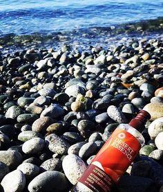 Daydreaming about being here. #repost via @miss_a_shines Morning ocean bathing! #desertessence #seakelp #lovemyskin