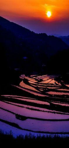 Terraced Rice Fields, Takuma, Okayama, Japan | by Takuma Kimura