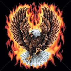 Fire Eagle T-shirt Eagle Images, Eagle Pictures, Eagle Tattoos, Flame Tattoos, Aigle Animal, Types Of Eagles, Eagle Wallpaper, Eagle Drawing, Eagle Painting