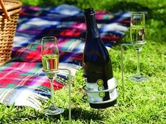 24 Ideias originais do presente para amantes de vinho | Panda Entediado