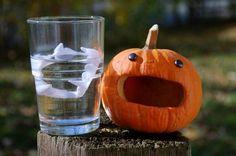 Pumpkin+Carving+Dentist | 17 Beautiful Pumpkin Carving | Funsterz.com - Amazing Videos, Amazing ...