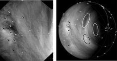 """O mapeamento do movimento das nuvens de Vênus mostra que os ventos na sua atmosfera estão cada vez mais rápidos. O planeta é conhecido por ter uma atmosfera em super-rotação, cuja circulação das massas de ar completa uma volta em torno do planeta a cada quatro dias terrestres - em contraste, o dia de Vênus é """"muito longo"""", já que o planeta demora 243 dias terrestres para dar a volta em si mesmo. A velocidade do deslocamento das nuvens subiu de 300 quilômetros por hora em 2006, quando…"""