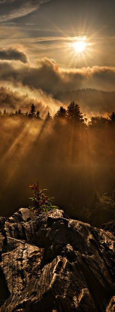 Appalachian dawn in the Smoky Mountains at Charlie's Bunion on the Tennessee / North Carolina border • photo: Robert Charity on FineArtAmerica