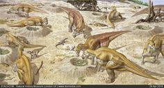 Maiasaura nesting site - stock photo