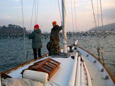 1930 ALDEN SCHOONER 43' design no. 309 Sail New and Used Boats