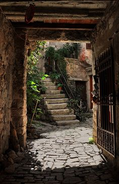 Photo by pdj. An entryway in Rovinj, Croatia. What I really love about this photo is the amazing frame Beautiful World, Beautiful Places, Saint Marin, Rovinj Croatia, Dubrovnik, Stairway To Heaven, Pathways, Stairways, Organic Gardening