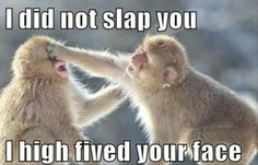 I did not slap you, i high fived // 14 Best of Funny Animals Picture Messages - @mobile9 #monkey #humor