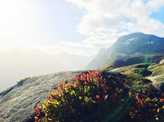 """108 likerklikk, 3 kommentarer – Stine Fivelstad🌿 (@stinefivelstad) på Instagram: """"🍁 #mittstranda #turjenter"""""""