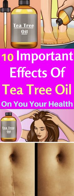 10 Important Effects Of Tea Tree Oil On You Your Health - infacter