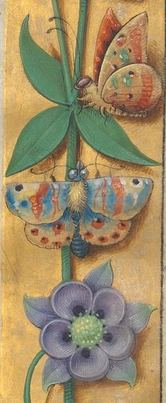 Pontifical. Publication date :  1501-1600 Type :  manuscript Language :  latin