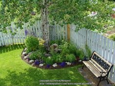 landscape shaded fence area with tree roots | Shady Nooks (National Gardening Association)