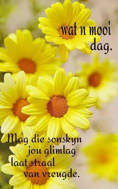 Geniet jou dag. Evening Greetings, Good Morning Greetings, Good Morning Wishes, Day Wishes, Good Morning Quotes, Lekker Dag, Goeie More, Afrikaans Quotes, Morning Blessings